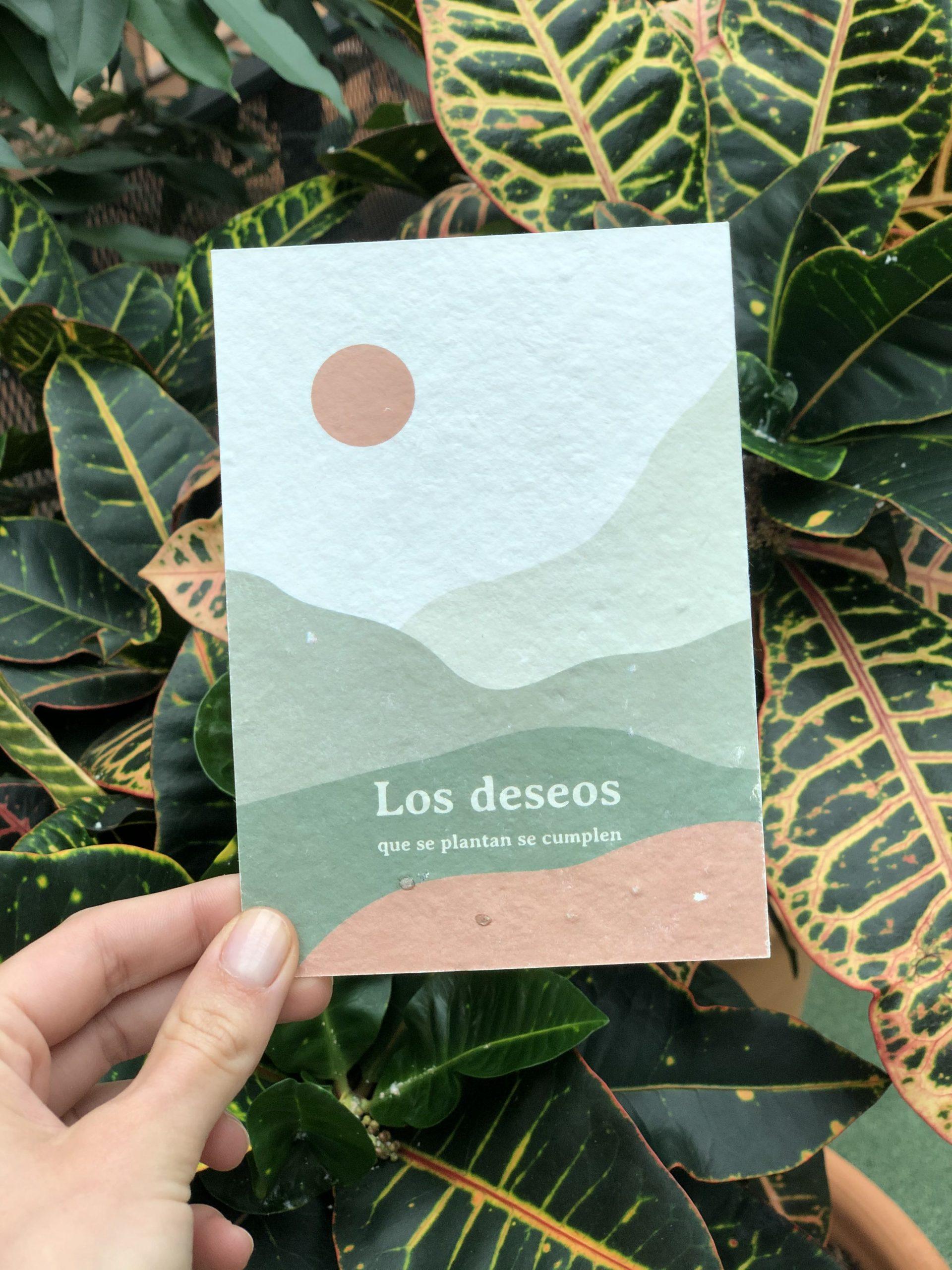 Regalo papeleria sostenible tarjeta postal