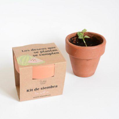 kit para sembrar sandia