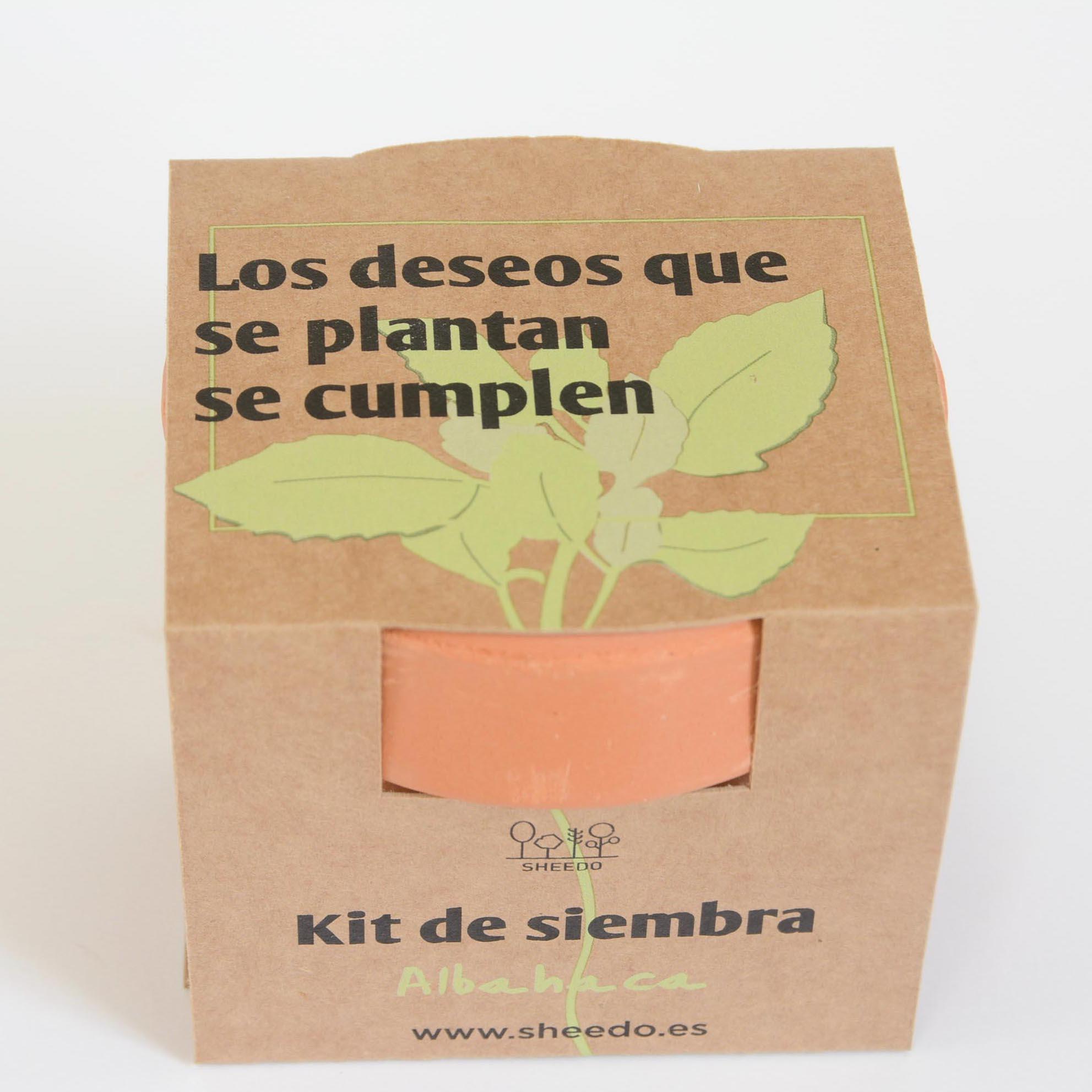 kit para sembrar plantas aromaticas
