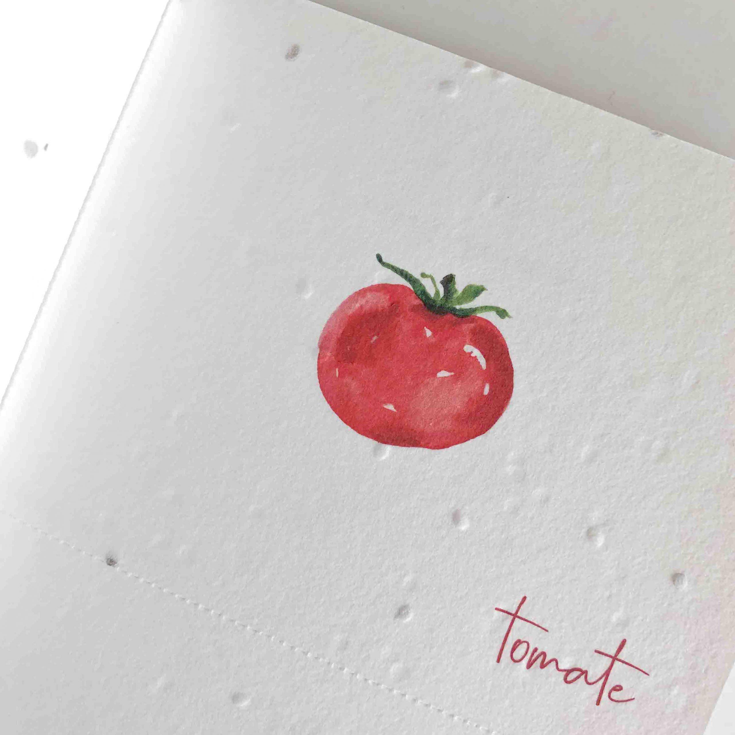 cuaderno plantable INTERIOR