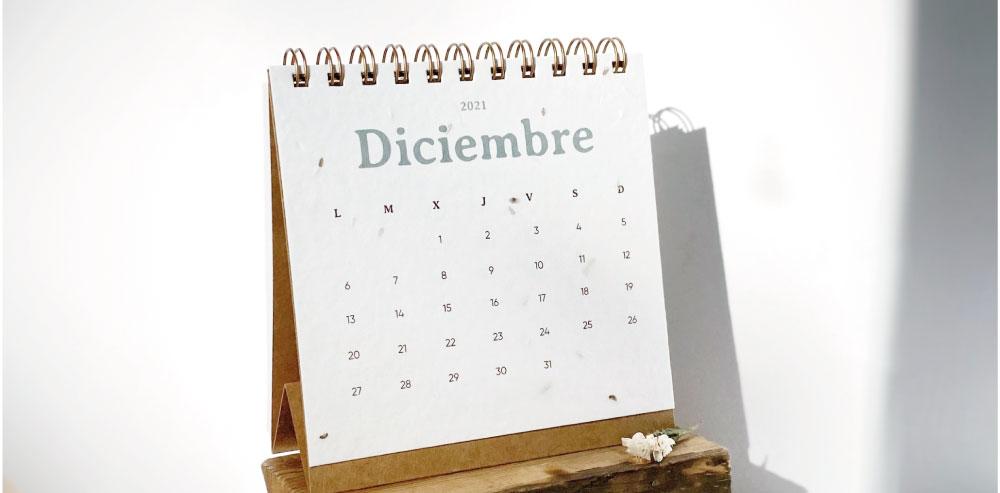 regalo calendario plantable