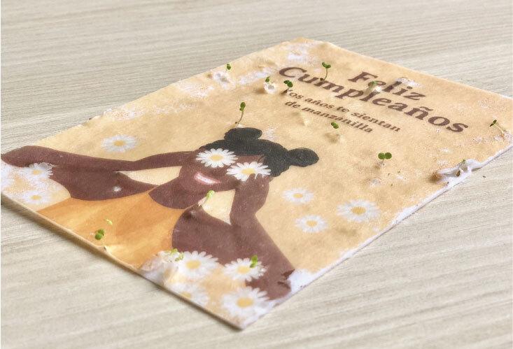 regalos papeleria sostenible