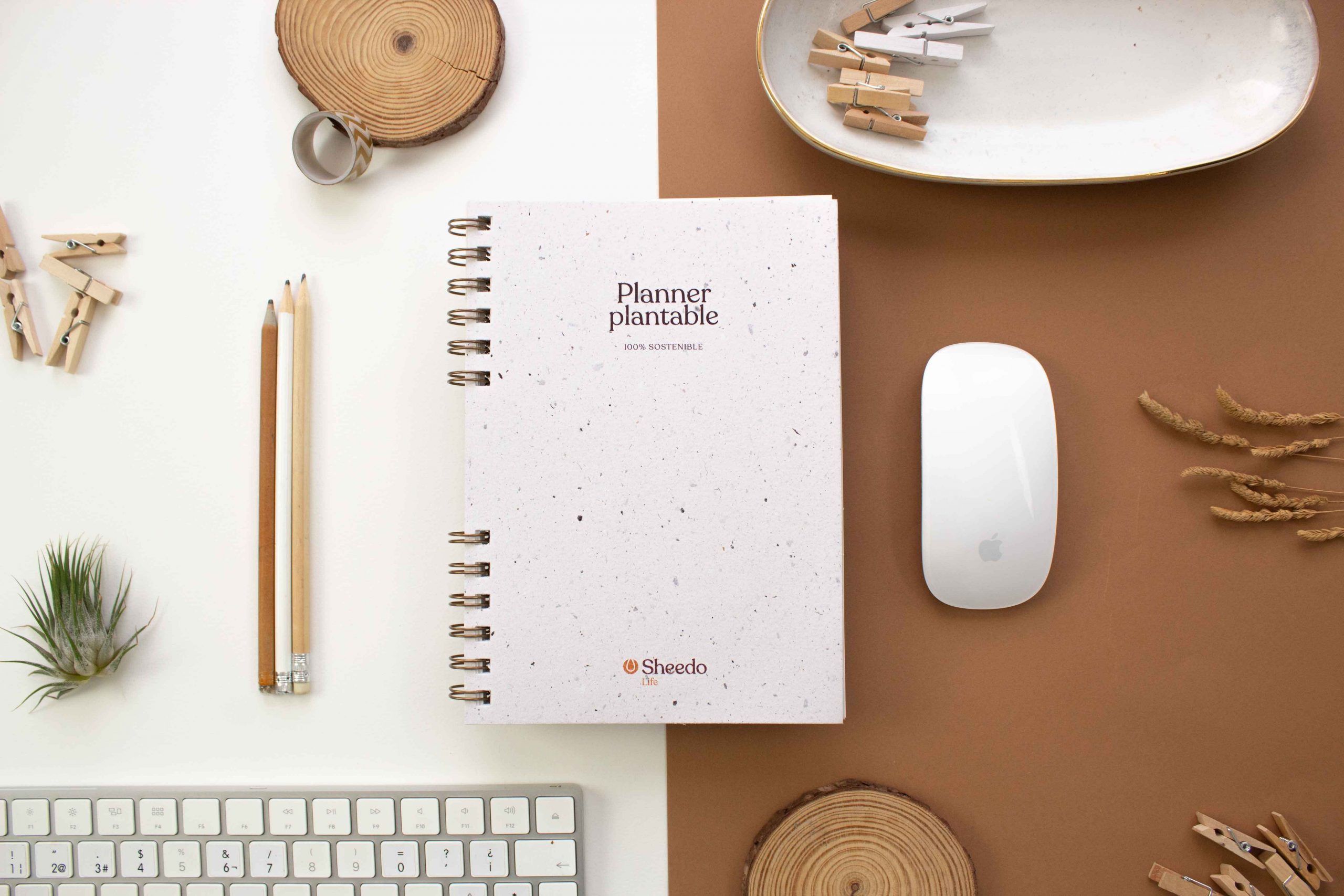 cuaderno plantable con semillas